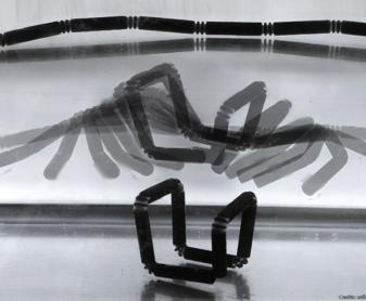 E se la stampa 3D rappresentasse il passato? Ecco la rivoluzione del 4D stampabile!